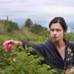 """""""Laukinės rožės"""""""