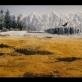 """""""Šaunusis ponas Lapinas"""", rež. Wes Anderson, 2009"""